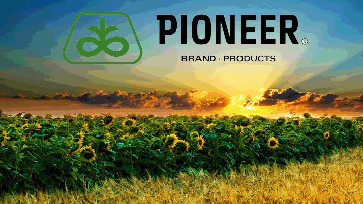 Pioneer (Пионер)