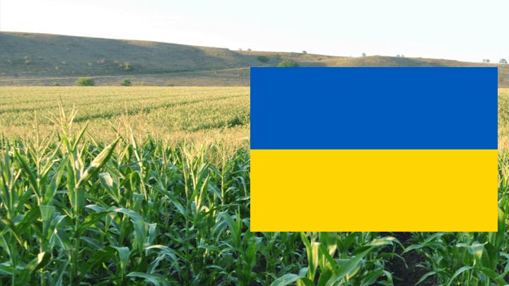 Украинская селекция